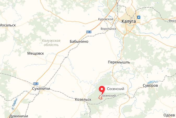 Убийство жителя Калужской области попало навидео
